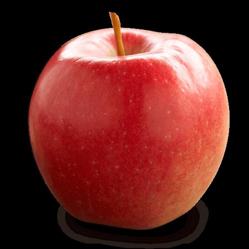 Http Www Onapples Com Apple Varieties Php